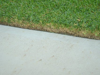 Edging done right.